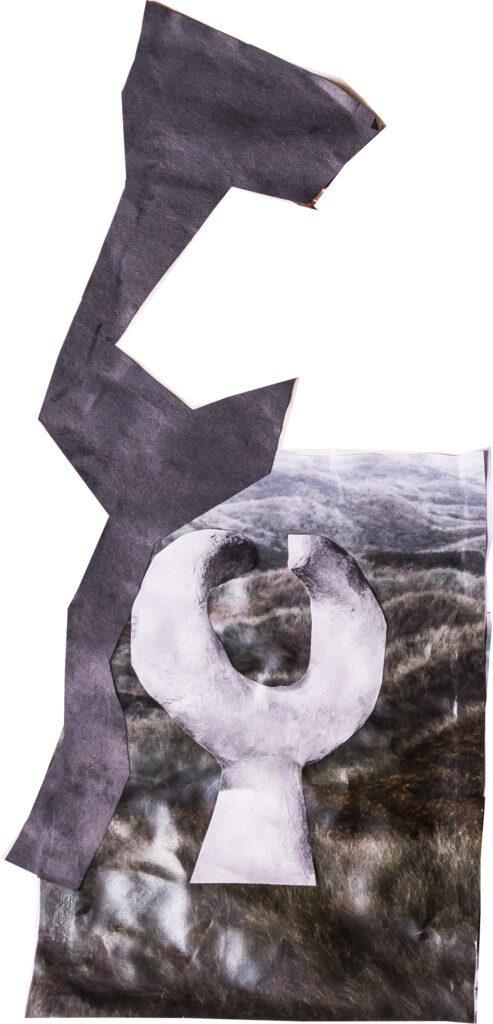 Llama Wolf Landscape Collage